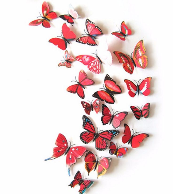 Best D Vlinders Images On Pinterest Butterflies D - Butterfly wall decals 3dpvc d diy butterfly wall stickers home decor poster for kitchen