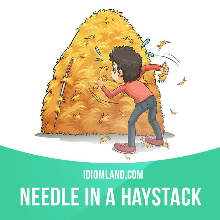 """Needle in a haystack"" is something extremely hard to find. Example: Finding the…"