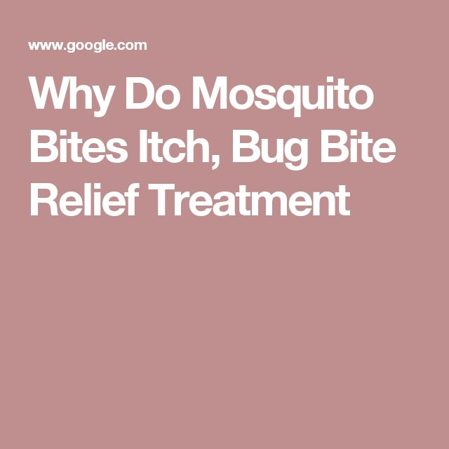 Why Do Mosquito Bites Itch, Bug Bite Relief Treatment