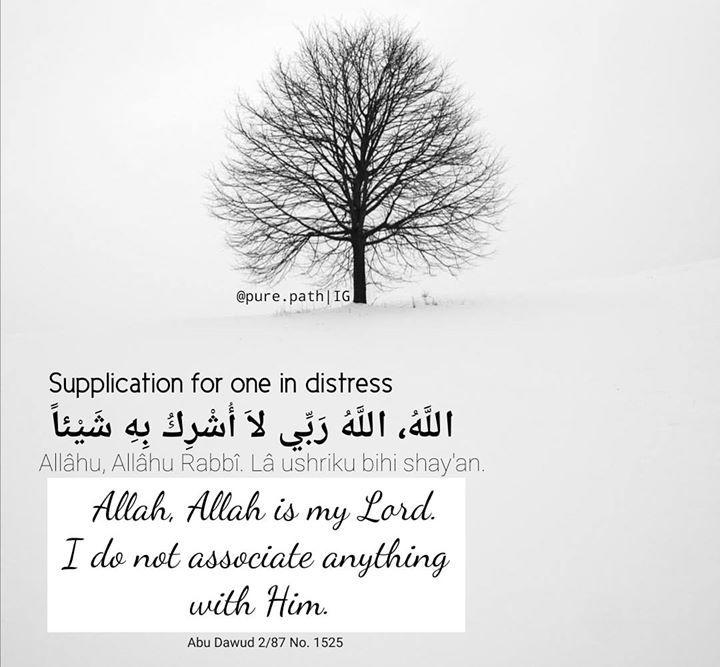 اللهم رحمتك أرجو فلا تكلني إلى نفسي طرفة عين وأصلح لي شأني كله لا إله إلا أنت O Allah It Is Your Mercy That I Hope Islamic Quotes In