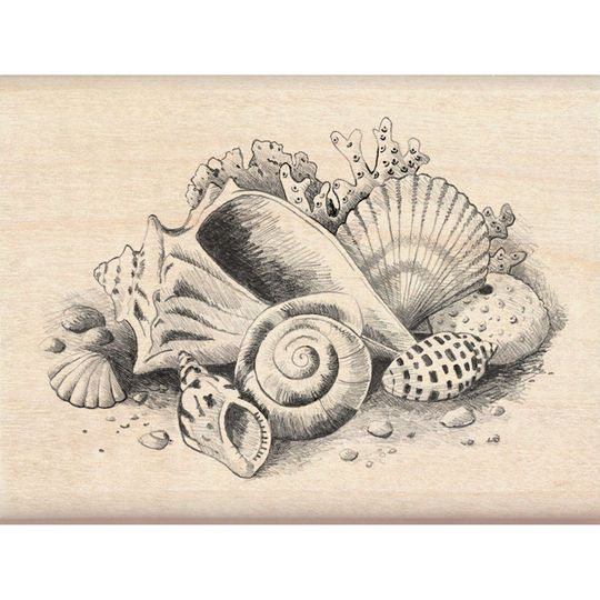 Inkadinkado Sketches Stamp, Seashells