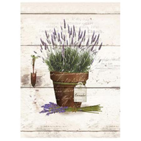 Obraz na plátně levandule v květináči - větší
