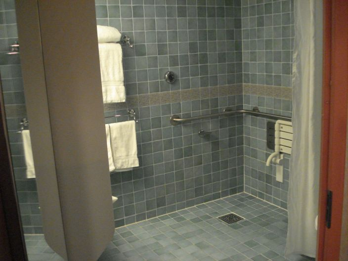 Accessible bathroom plans handicap showers or handicap for Bathroom for disabled plan