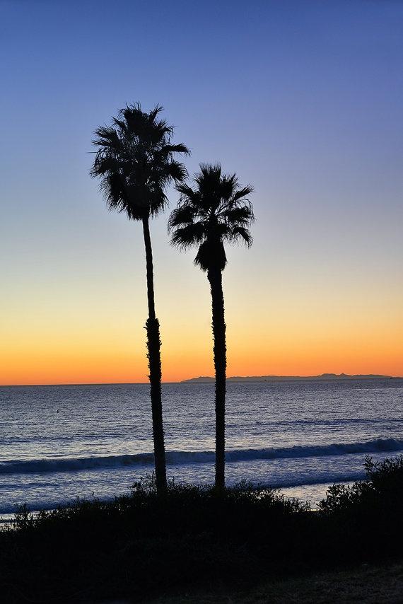 Sunset Silhouette Photograph   California Palm Trees   San ...