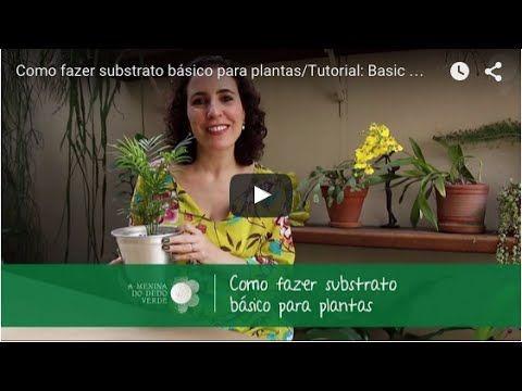 Como fazer substrato básico para plantas/Tutorial: Basic Substrate for Plants - MDV - YouTube