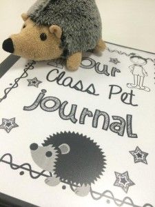 Class Pet Journal Kids bring it home over the weekend and write about what they did :)