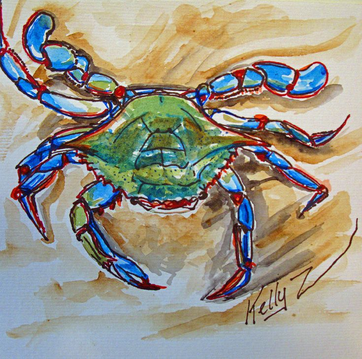Best 25 crab painting ideas on pinterest crab art for Blue crab fishing