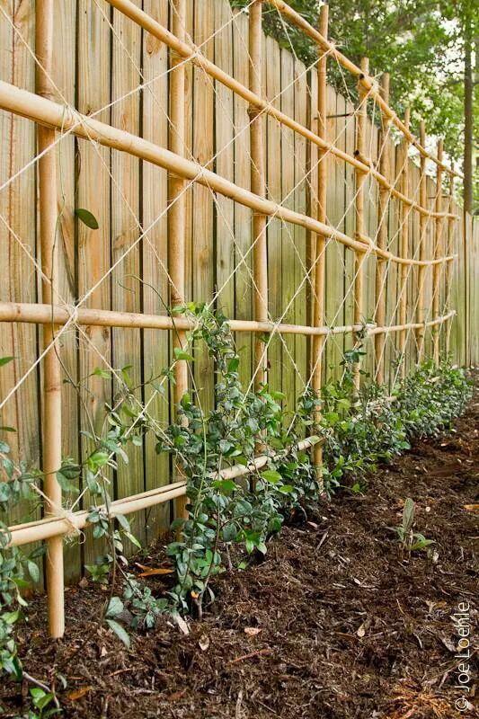 Diy bamboo trellis from the garden pinterest - Support pour plantes exterieur ...