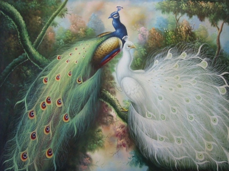 Image Detail For Free Peacock Oil Painting Wallpaper