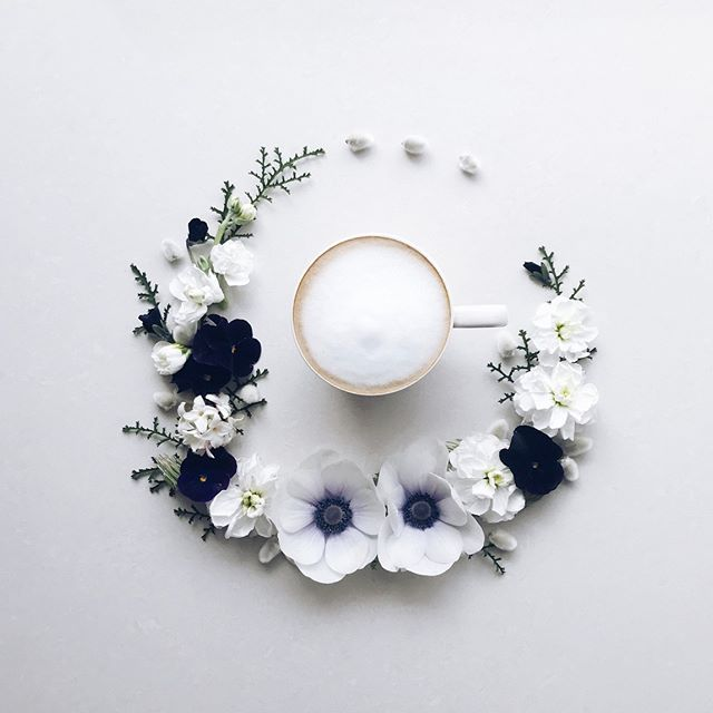 2017.3.15 Happy Wednesday ☕️ White and black flowers . I am quite well now . . . . . . 秋に植えたビオラやパンジー、ストックがたくさん咲いています♪ ブラックのビオラは1番のお気に入り アネモネはいつも2輪ずつしか咲かない... . 2枚目は文字入れして使ってください♪ その時はタグ付けお願いしますね . #花のある暮らし#カフェラテ