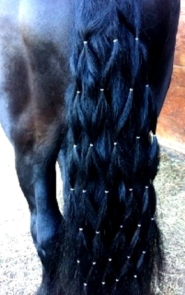 Horse tail diamond braid, i would like to do that for the horse trails.