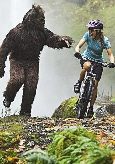 'bear' vs biker - jackass meets candid camera type stunt ...