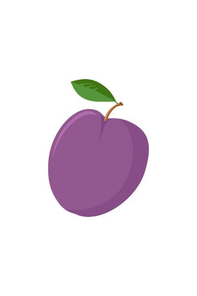 Plumb Vector #plumb #vector #fruits #handdrawvector http://www.vectorvice.com/fruits-vector