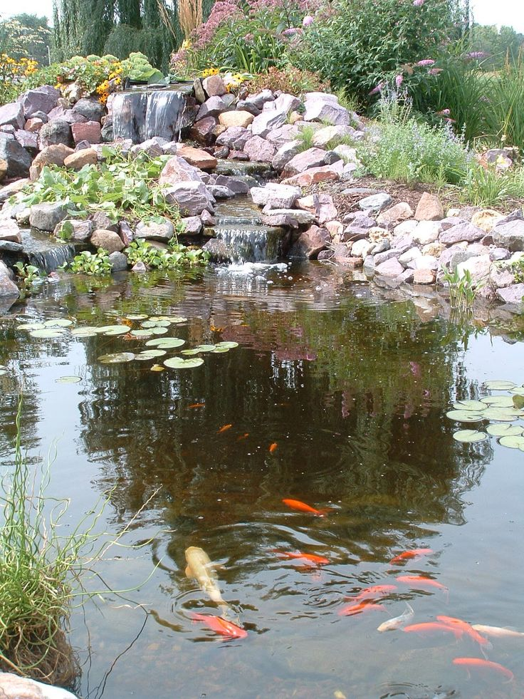 49 best slope drainage images on pinterest garden ideas for Large outdoor fish ponds