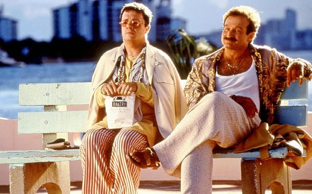 The Birdcage(1996) I love this movie with Robin Williams... In Mike Nichols' sweetly tart comedy-of-postmodern-manners, Williams is actually the most restrained member of the ensemble. Ceding the scen...