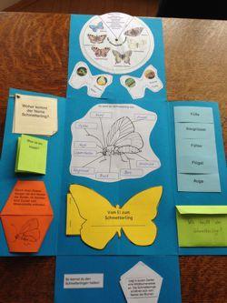 Lapbooks in der Grundschule: Schmetterling Lapbook
