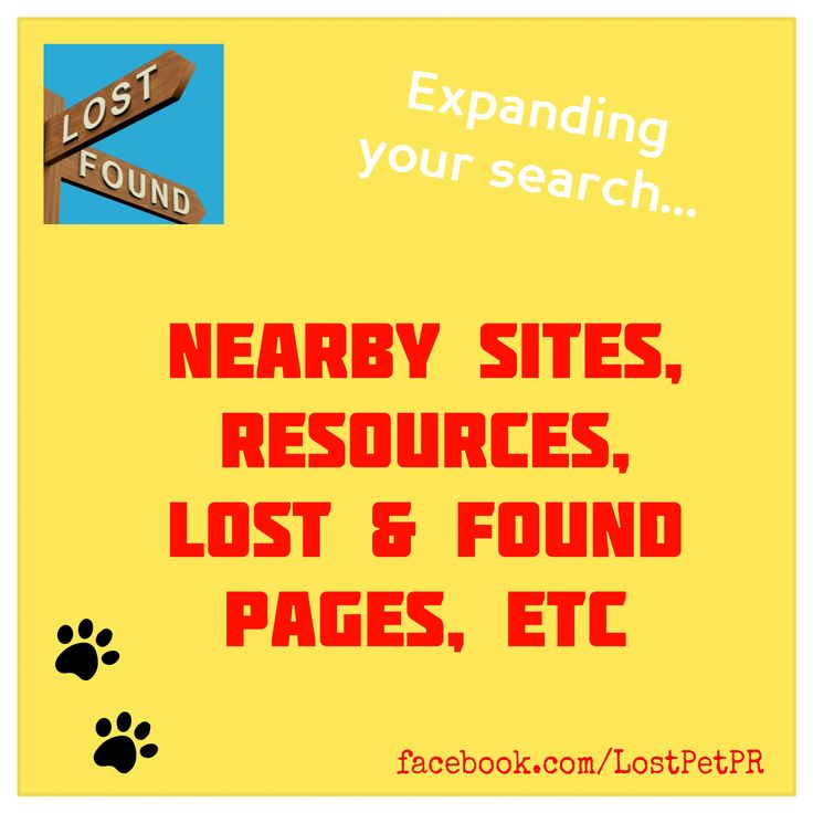98 best Missing Pet Tips images on Pinterest Lost pets, Your pet - make a missing poster