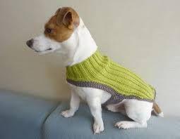 Aprende a hacer ropa para perros pequeños | Cuidar de tu mascota es facilisimo.com