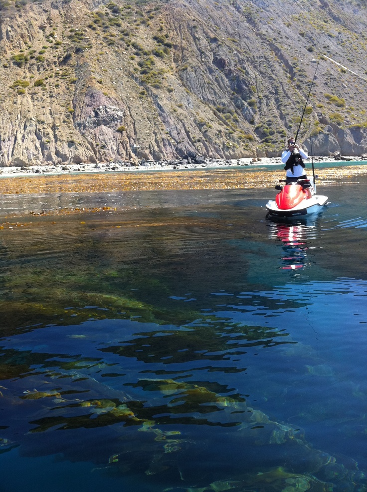 21 best images about jet ski fishing on pinterest for Best fishing in southern california