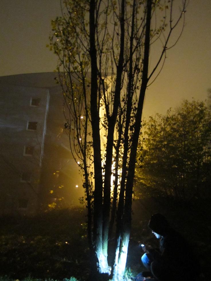 Lyon2011