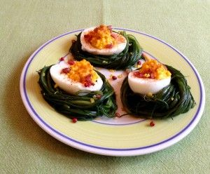 Agretti Nests with Deviled Eggs