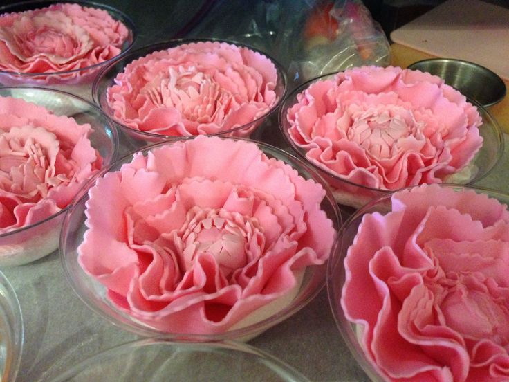Peonies setting up in small bowls.