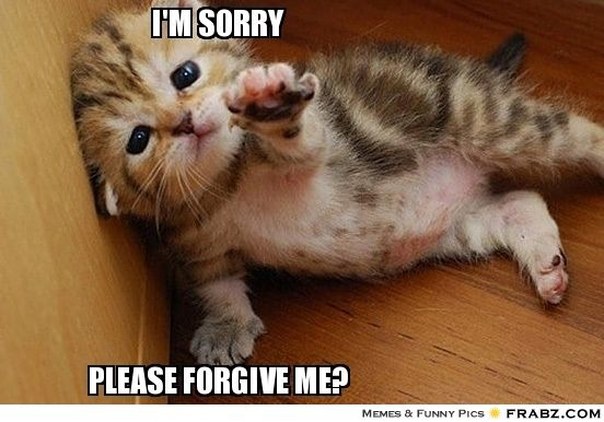 i am sorry please forgive me - Google Search   Just Say ...