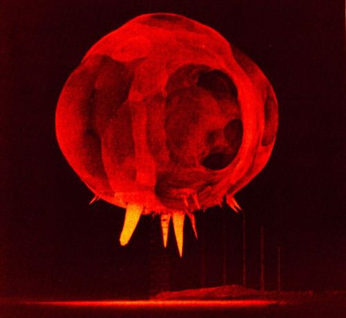 Nuclear explosion photographed by rapatronic camera less than 1...