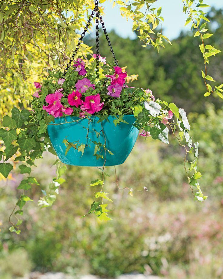Viva Self Watering Hanging Basket