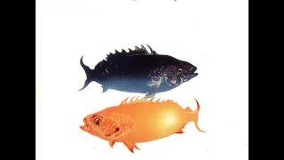 sotto il segno dei pesci venditti - YouTube