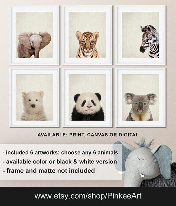 Baby animal prints nursery, Zoo animals nursery, Animal prints for nursery, Animal baby room decor, Nursery animal wall art Print/Canvas/Digital