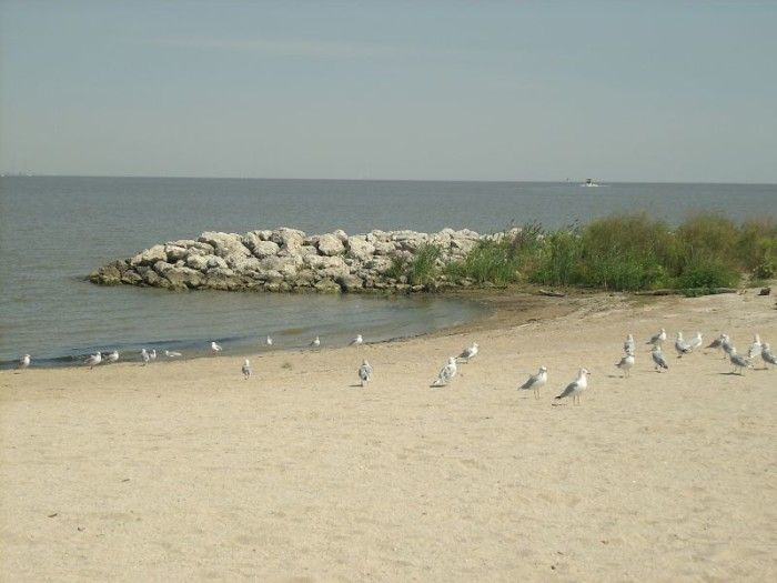 1 Maumee Bay State Park Beach Oregon Oh 8 Best Beaches In Ohio
