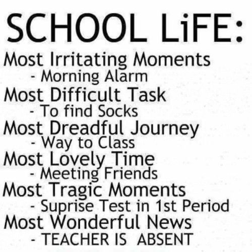 Image result for SCHOOL LIFE