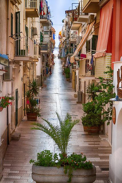 Pedestrian alleyways of Vieste / Italy (by maurci). - See more at: http://visitheworld.tumblr.com/#sthash.fPnGjP8J.dpuf