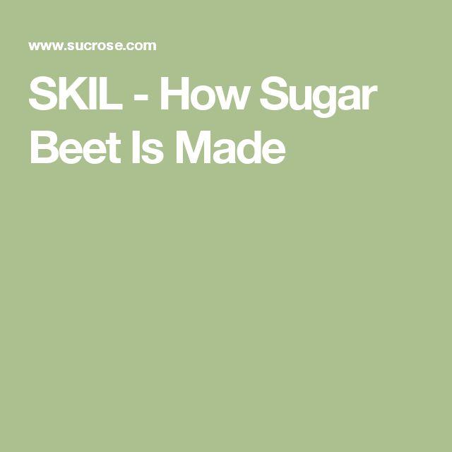 SKIL - How Sugar Beet Is Made
