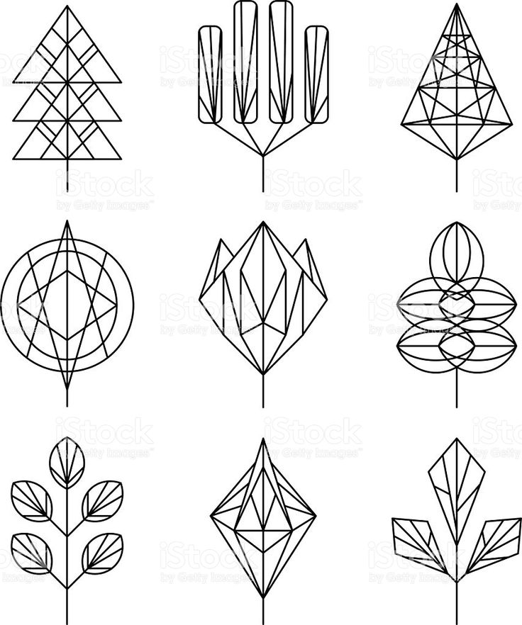 Graphical Leaf Of The Tree Set Hipster Linear Style In