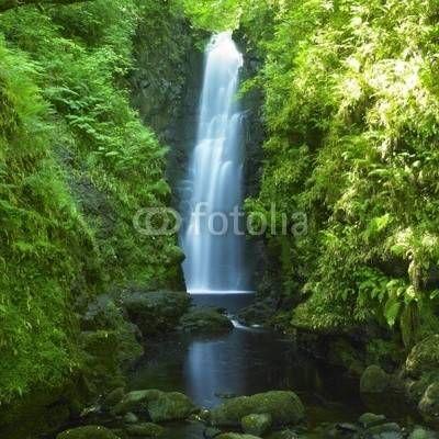 wodospad kaskady roślinność kamienie cranny antrim irlandia północna, 29298018 - wf1319