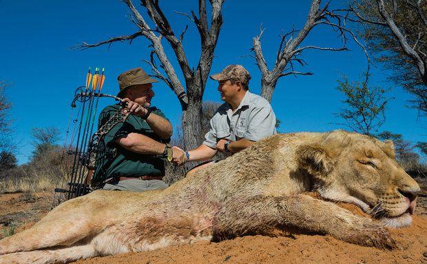 NG - Esta leoa foi morta com arco e flecha por Steve Sibrel, à esquerda, em uma fazenda na província Noroeste, na África do Sul
