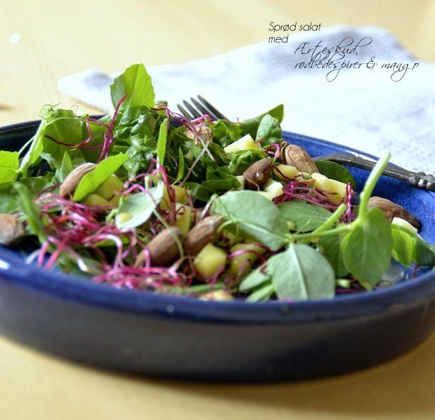 Sprød salat med ærteskud, rødbedespirer & mango