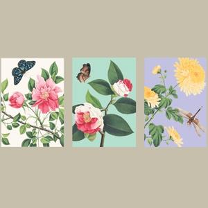 Caspari Winterthur Florals Boxed Notes