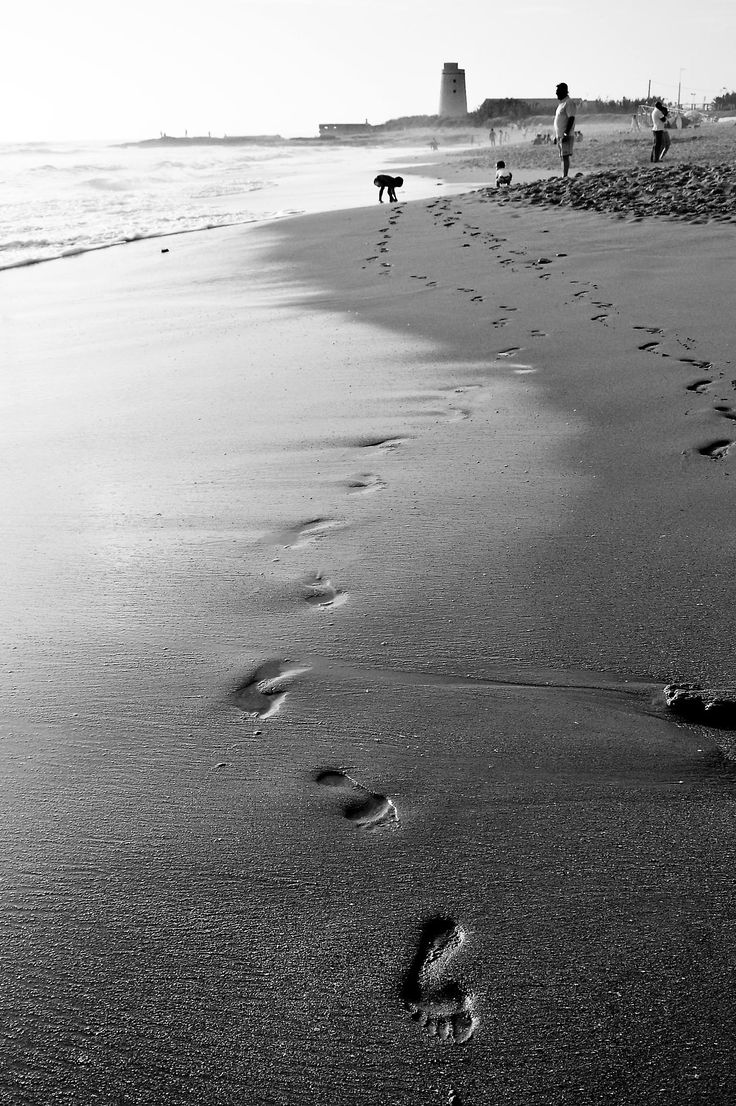 La Playa del Palmar de Vejer (Cádiz)