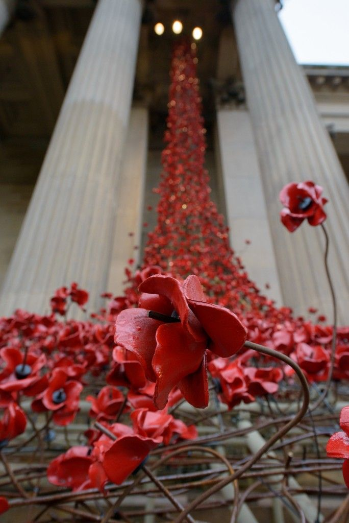 Poppies: Weeping Window at St George's Hall, 2015. Image credit - Mark McNulty