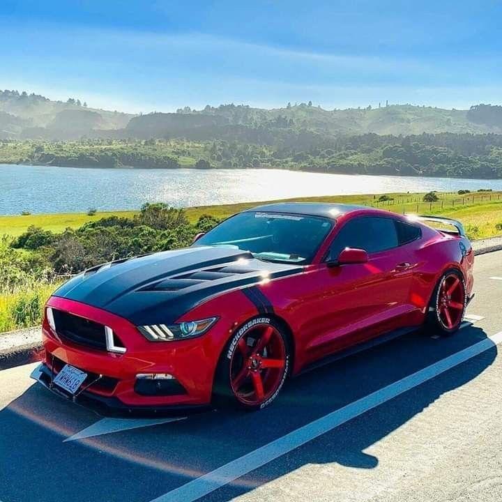 Mustang De Respeito Con Imagenes Auto De Lujo Coches