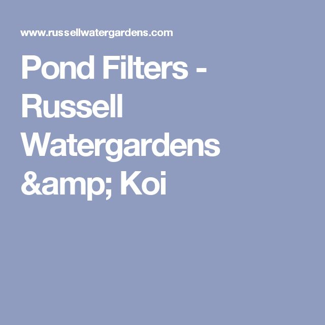 1000 ideas about pond filters on pinterest ponds pond for Koi pond maintenance near me