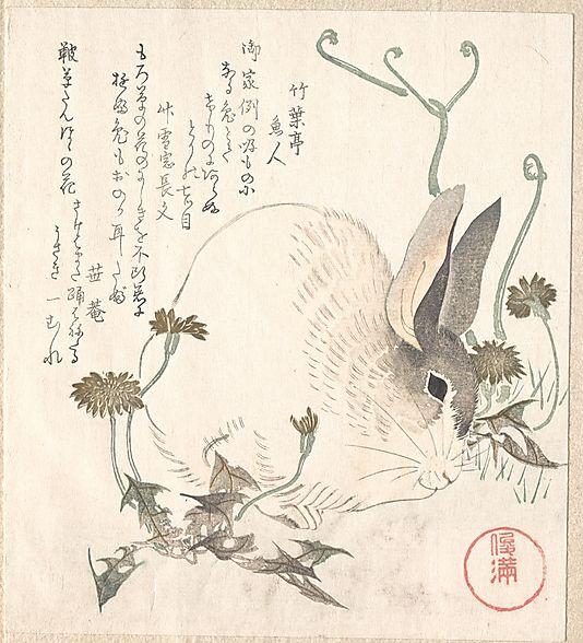 Hare and Dandelion, Kubo Shunman, Japanese, ca 1820, Metropolitan Museum of Art collection