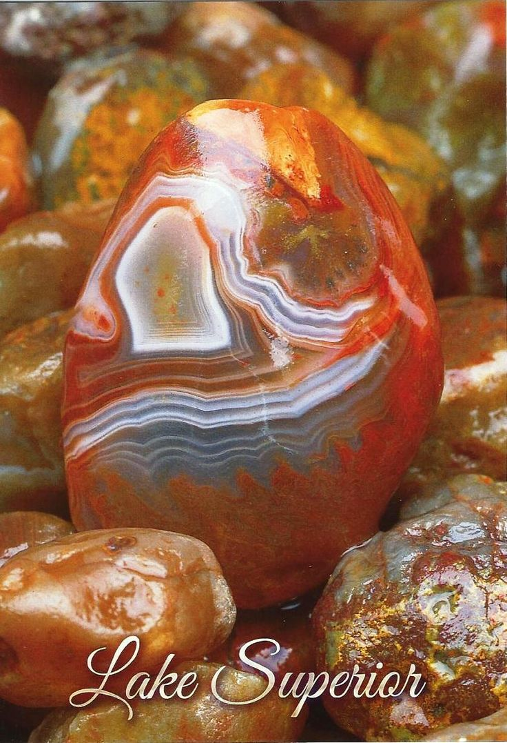 Minnesota Lake Superior Agate. My Mom and I have been collecting since I was 7. We have a big ole wooden bowl full of them.  Some need to be cut, you can just tell how beautiful they are on the inside.