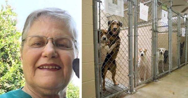 Als ze bij het asiel komt vraagt ze om een hond met de minste kans op adoptie - Wat ze DAN doet?