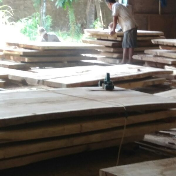 Fast deal for Suar Wood Table Slab. PM me for details – Selling this on the go…