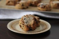 Rock Cakes by NOGLUTENS - gluten free, dairy free