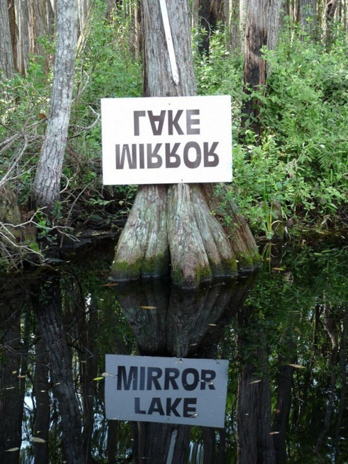 epicFunny Pics, Lakes Signs, Mirrors Image, Reflections, Things, Places, Mirrors Lakes, Portland Oregon, Mirrors Mirrors